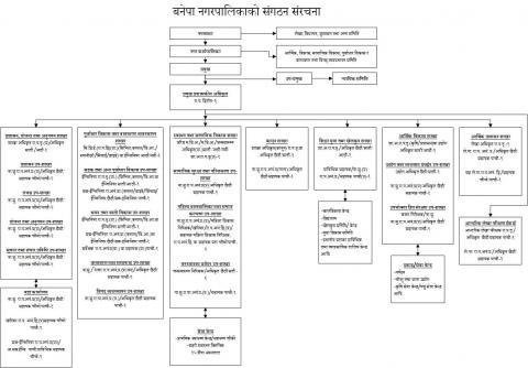 संगठन संरचना